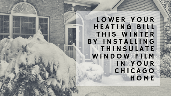 thinsulate window film chicago